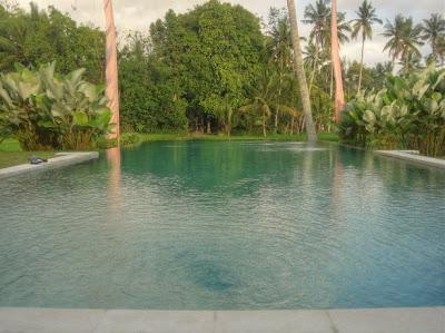 Zwembad van Villa Sabandari, 1 van de Bali boutique hotels in Ubud