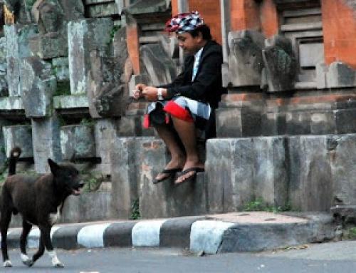 Veilig Verkeer Bali