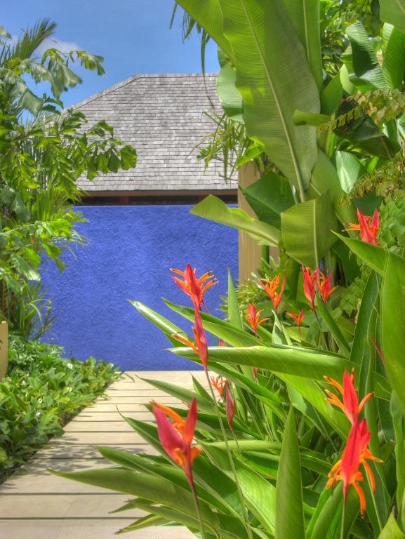 Villa Sabandari - Ubud - Majorelle Blue